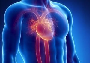 nerwica serca leczenie